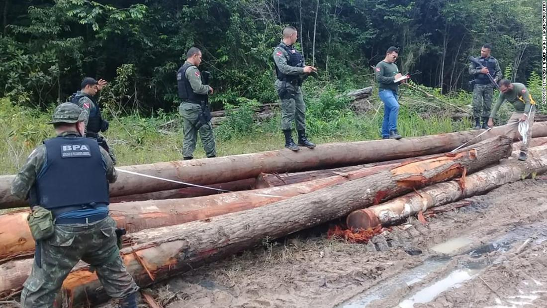 Wood illegally removed from a reserve in Para, Brazil on February 20, 2020.