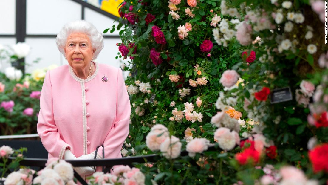 Chelsea Flower Show goes virtual for the first time