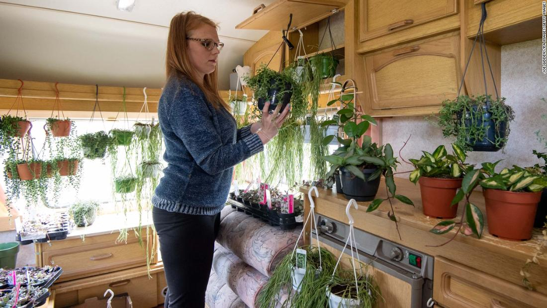 Kerri Notman has had to make space for 12,000 plants from her store so she can continue to fulfil online orders during the coronavirus pandemic.
