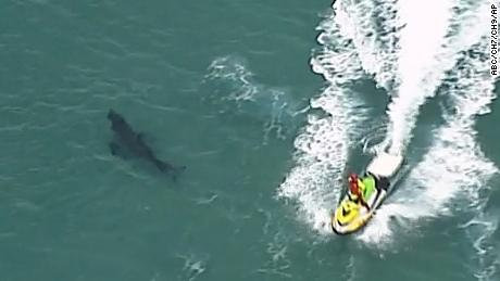 In this aerial video image, a jet ski passes over a shark swimming along the coast of Kingscliff, New South Whales, Australia, Sunday 7 June 2020.