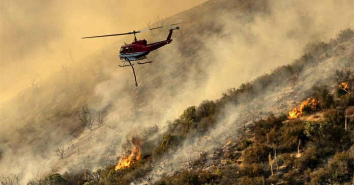 California firefighters face flames, heat and a bull