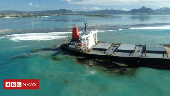 Why the Mauritius oil spill is so serious