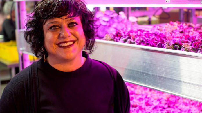 This innovative farm grows more than just fresh produce
