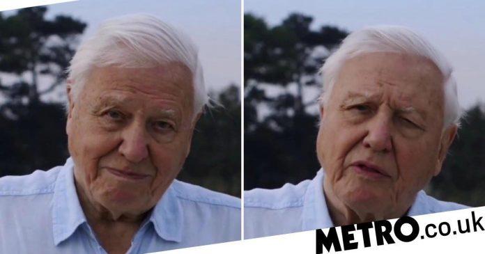 Sir David Attenborough broke the record of 1 million Instagram followers