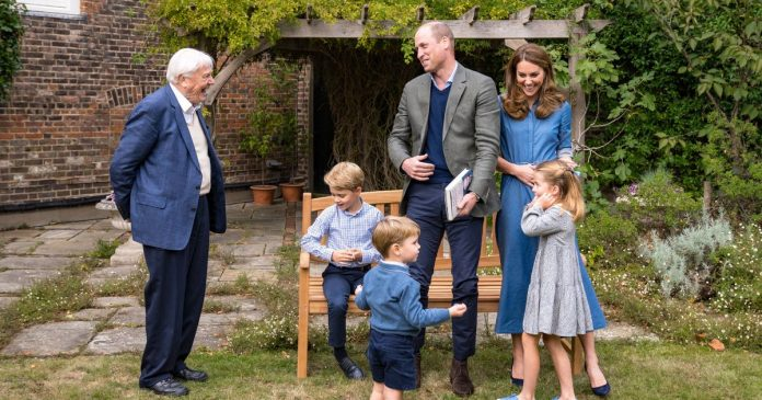 Prince George captivated by David Attenborough's shark teeth in honorable new pictures