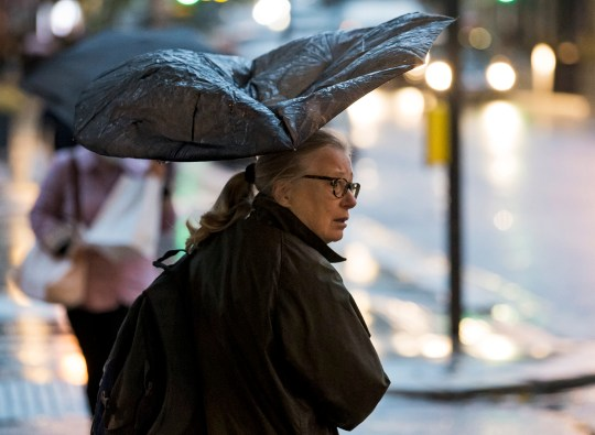 ?  Licensed for London News Pictures.  02/10/2020.  London, UK.  A woman shelters under an umbrella while battling heavy rain and wind during a morning tour at Ledbrock Grove in Ledbrook Grove, West London as Storm Alex brings 90 MPF wind and heavy rain across much of the UK.  Photo credit: Ben Couthra / LNP