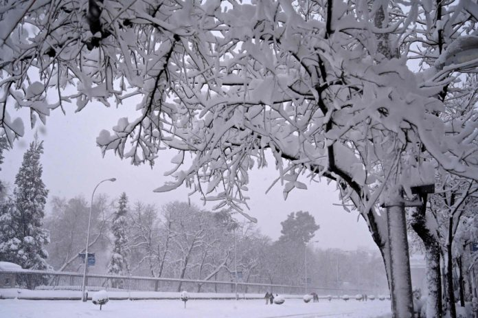 Madrid is experiencing the largest amount of snow in 50 years - Photo