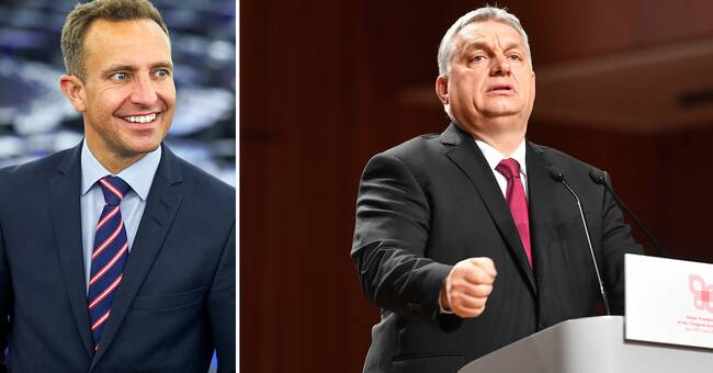 Hungarian Fitz leaves EU party group EPP