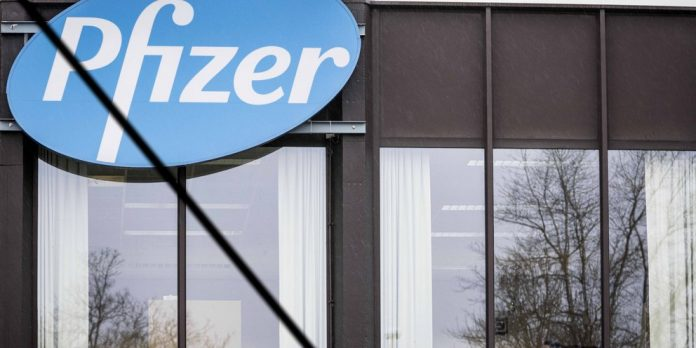 Pfizer Bootcamp in Thessaloniki - Looking for Software and Cloud Scientists |  Hellas