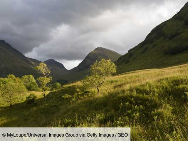 Scotland: This company offers to become a lord or woman to preserve nature reserves.