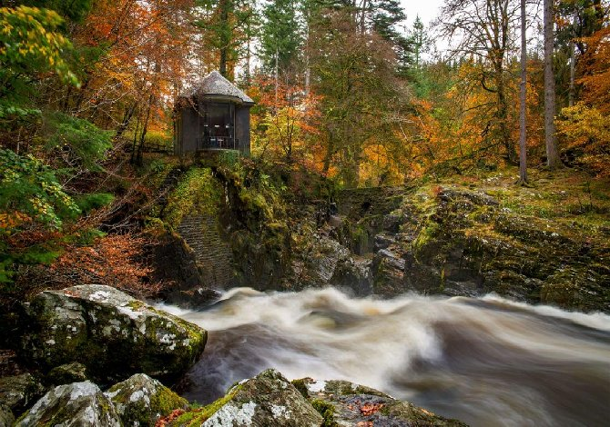 Wander the Tolkeen Forest in Scotland under the spell of hermitage, autumn and foliage