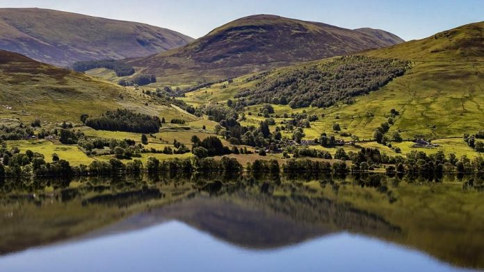 Scotland may become the first rewilding nation in the world.  how did this happen?