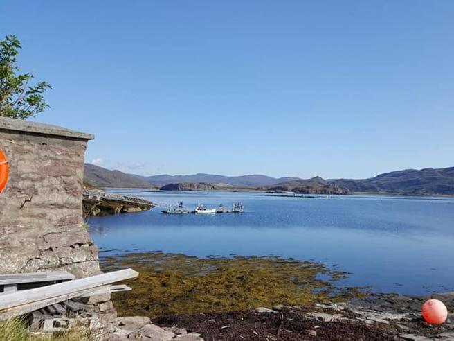 Scotland, wanted patron for a small uninhabited island for thirty years- Corriere.it