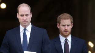 Prince William and Prince Harry at the Grenfell Tower National Memorial Service on December 14, 2017