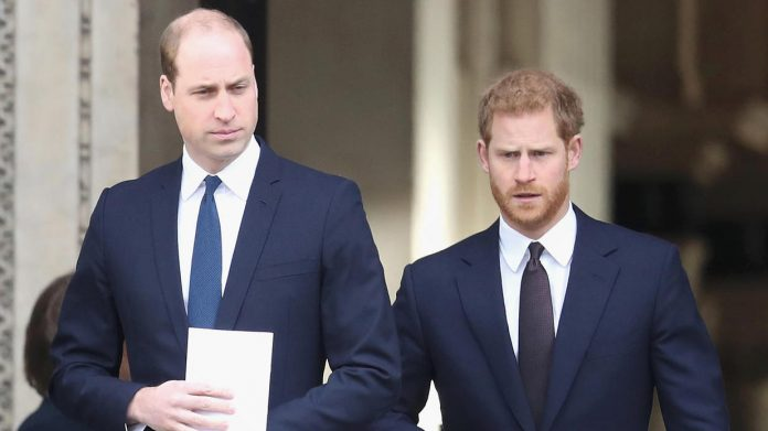 William and Harry's private meeting scheduled: is there an argument?