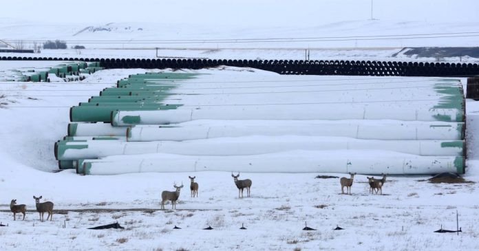 Controversial Keystone XL Pipeline Project Abandoned    world