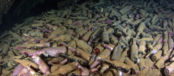 19th-Century Beer Discovered on the Bottom of the Sea in Scotland: Yeast Is Alive