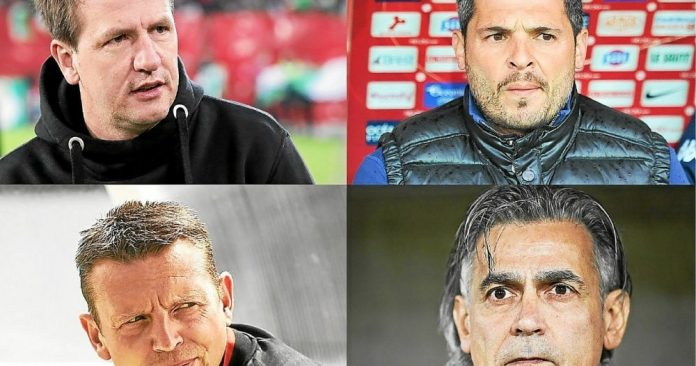 Football.  Dumont, Ravelli, Jacobacchi...: Newcomers on the Ligue 2 bench - football