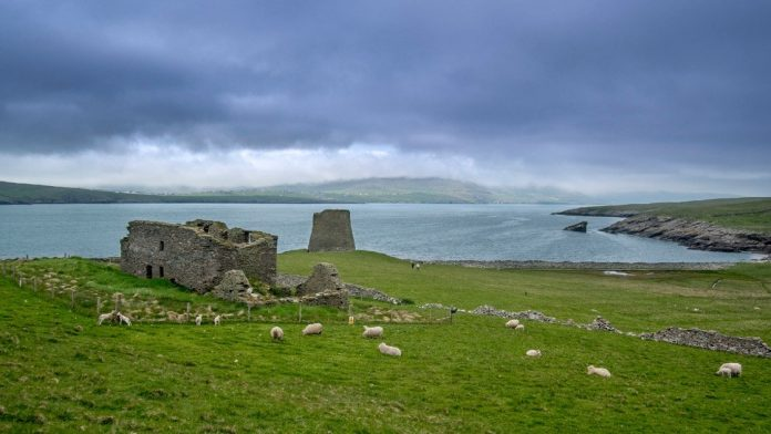This charming little island in Scotland is looking for a keeper to watch... Sheep Fence