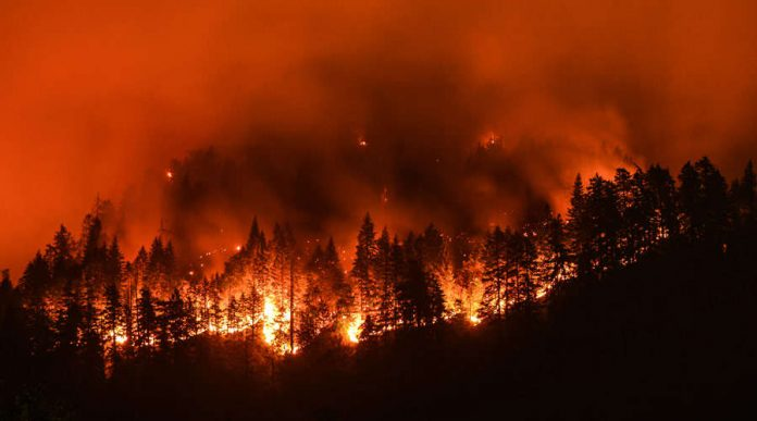 Forest fires in Greece: Uncontrolled forest fires - people leaving the capital!  - blaze-sweep-through-athens-suburbs-in-5th-day-greece-wildfire